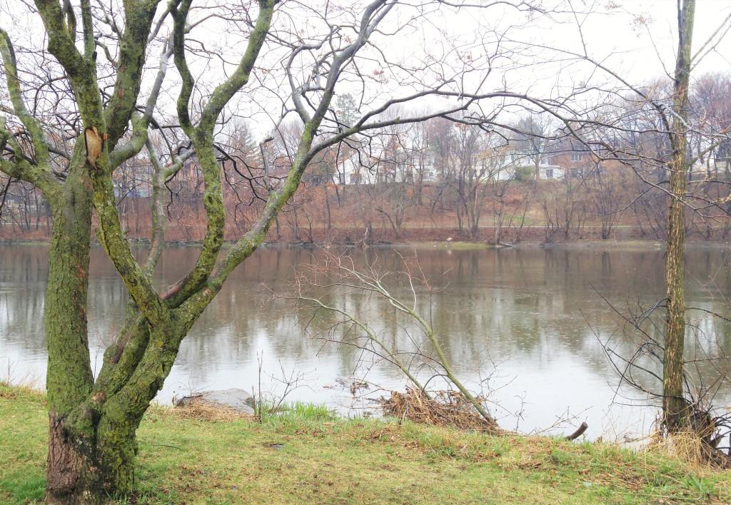 rideau river fixed